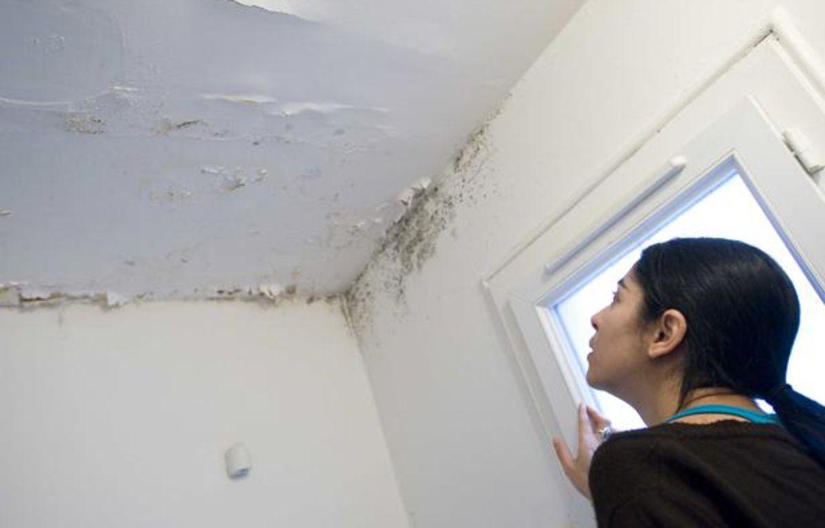 Dégât des eaux sur le plafond et les murs d'un appartement. –  MAISONNEUVE/SIPA
