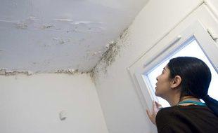 Dégât des eaux sur le plafond et les murs d'un appartement.