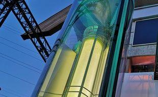 Dans ces colonnes de 4 m de haut pour 1 m de large, des micro-algues sont mises en culture et captent le CO2, le dioxyde d'azote et les particules fines que contient l'air.