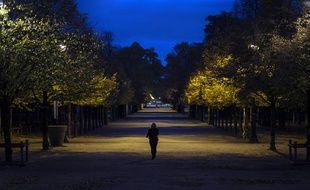 Le Parc des Tuileries à Paris (octobre 2020).