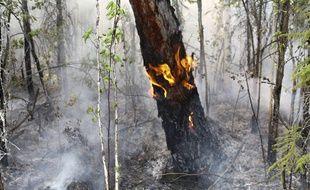 La Sibérie est touchée par d'importants incendies depuis plusieurs semaines.