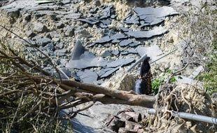 Valise à la main, une femme tente de se frayer un chemin sur une route détruite à Palu, en Indonésie, frappée par un séisme.