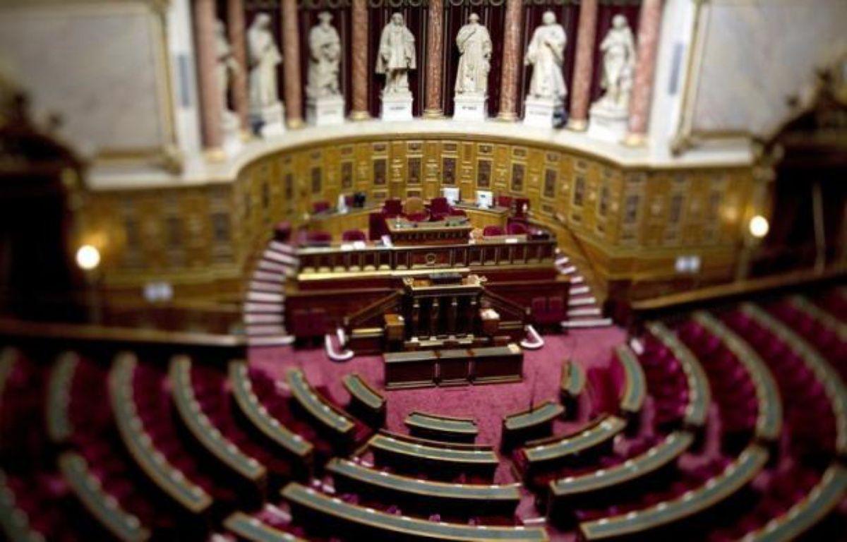 Le Sénat a adopté mardi soir à son tour, après l'Assemblée nationale, le projet de loi créant des emplois d'avenir pour des jeunes pas ou peu qualifiés. – Joel Saget afp.com