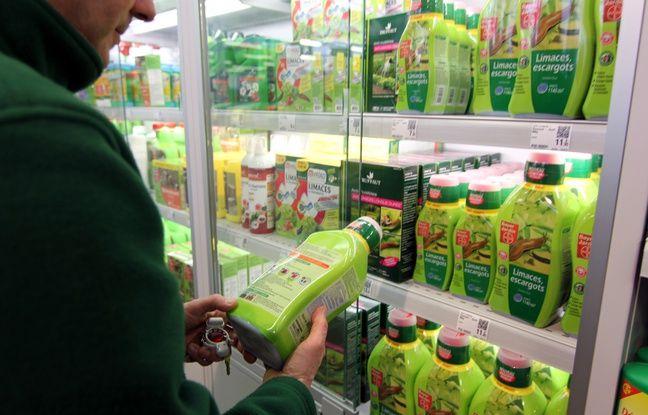Illustration de pesticides et désherbants, ici au magasin Truffaut de Rennes Alma, où les produits sont  rangés dans une vitrine.