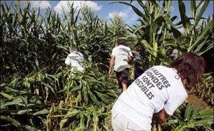 Avec plusieurs années de retard, la France a transposé par décrets une directive européenne relative aux cultures des organismes génétiquement modifiés (OGM), au risque de susciter, en pleine campagne présidentielle, une nouvelle levée de bouclier chez ses opposants.