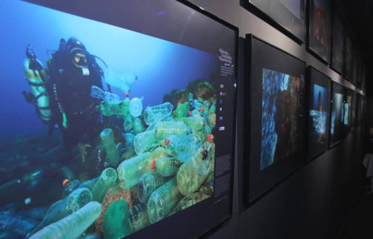 """Exposition """"Les petites îles, sentinelles de la Méditerranée"""", à l'Aquarium de Paris en juillet 2012. – A.Chauvet - 20 Minutes"""