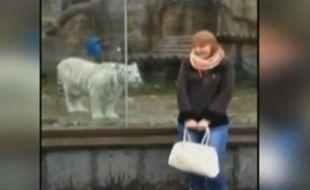 Extrait de la vidéo d'une touriste russe dans un zoo.