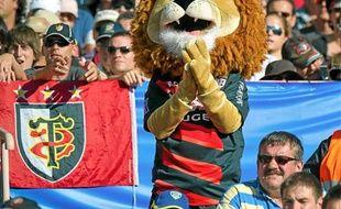 Ovalion, le lion du Stade Toulousain, est soumis à un règlement très strict.