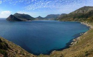 Dorades, canyons sous-marins, récifs coralliens profonds et bancs d'éponges forment des écosystèmes uniques, que l'Afrique du Sud tente de protéger dans sa première réserve marine au grand large.