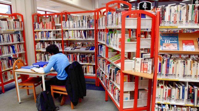 Illustration d'une bibliothèque.  – GILE MICHEL/SIPA