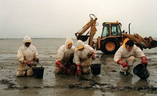 Des bénévoles nettoient une plage après la marée noire de l'Erika, en 1999