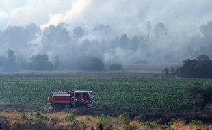 Les pompiers luttent contre le feu à Saint-Cannat (Bouches-du-Rhône), le 15 juillet 2017.