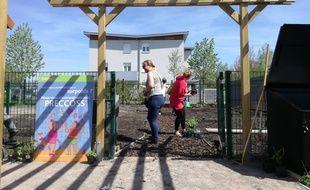 Le jardin santé du Carré vert au Neuhof à Strasbourg a été remis en état par le service des espaces verts de la ville.