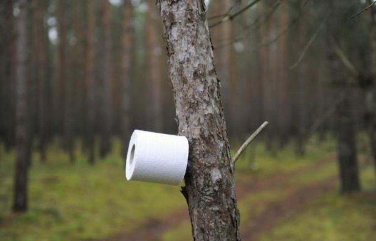 Les toilettes sèches à l\'assaut des festivals et des tabous