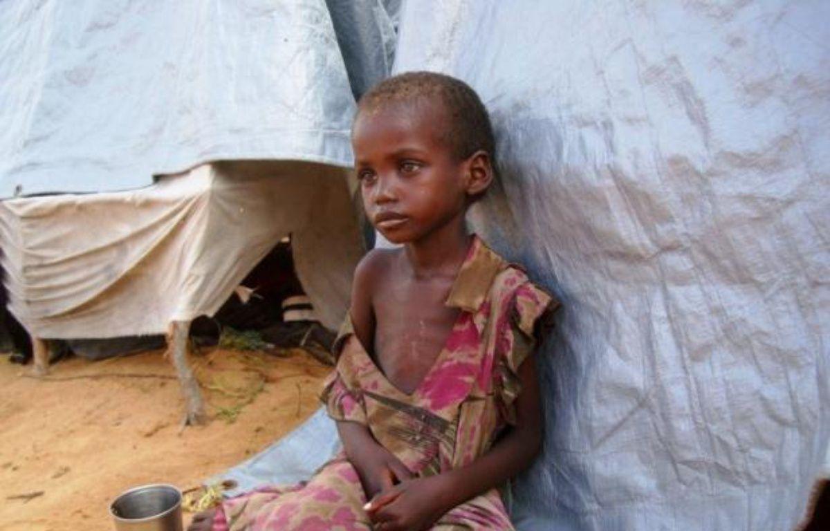 """L'Organisation de l'ONU pour l'alimentation et l'agriculture (FAO) a revu à la baisse mardi le nombre de personnes affamées dans le monde, à près de 870 millions, un chiffre toujours """"inacceptable"""", et a déploré le ralentissement de cette baisse ces dernières années. – Mustafa Abdi afp.com"""