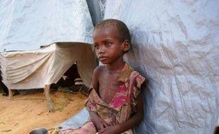 """L'Organisation de l'ONU pour l'alimentation et l'agriculture (FAO) a revu à la baisse mardi le nombre de personnes affamées dans le monde, à près de 870 millions, un chiffre toujours """"inacceptable"""", et a déploré le ralentissement de cette baisse ces dernières années."""