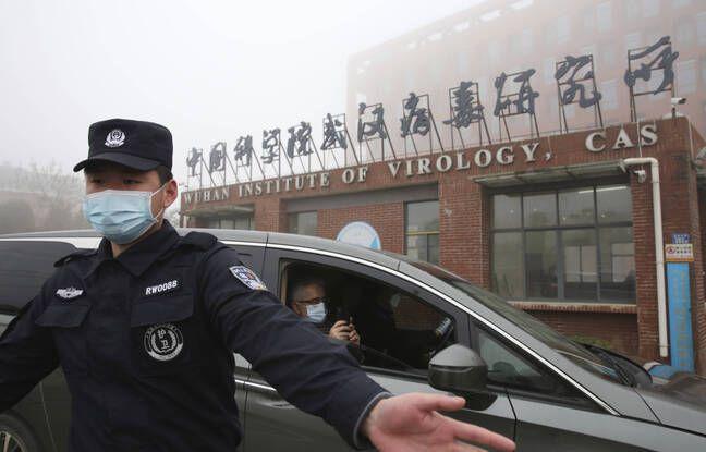 648x415 arrivee de l equipe de l oms au centre de virologie de wuhan le 3 fevrier 2021