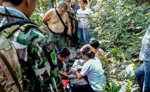 Une Française s'est fait mordre par un crocodile dans le parc national thaïlandais au nord de Bangkok alors qu'elle tentait de se prendre en photo