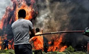 Des incendies en Grèce ont tué 74 personnes, le 24 juillet 2018.