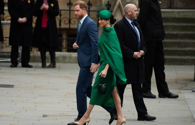 VIDEO. Le prince Harry a aidé Meghan lors l'enregistrement du documentaire « Elephant »