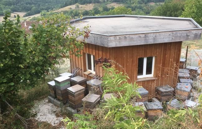 Le pavillon dispose de quatre ruches