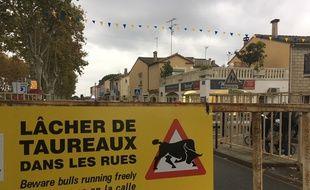 Lors d'un lâcher de taureaux à Aigues-Mortes, ce lundi.