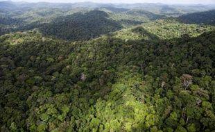 """Une enquête a été ouverte par le parquet de Cayenne pour """"faux et usage de faux"""" concernant des documents d'impact écologique versés au dossier qui a débouché sur l'attribution d'un permis minier dans le Parc amazonien en Guyane, a-t-on appris jeudi."""