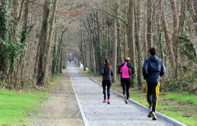 Des sentiers sont en cours d'aménagement à la Prévalaye, à Rennes. Les joggeurs s'en sont déjà emparés.