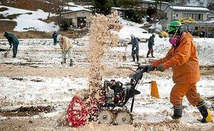 Des ouvriers décapent la couche supérieure du sol à Fukushima.