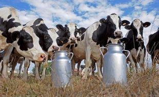 Le gouvernement tentera tant bien que mal lundi de mettre d'accord les industriels et la grande distribution afin d'obtenir une revalorisation des prix du lait pour soutenir les éleveurs, lors d'une table ronde au ministère de l'Agriculture.