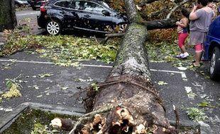 Orages: Importants dégâts à Montauban