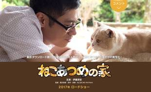 Neko Atsume aura droit à son adaptation cinématographique