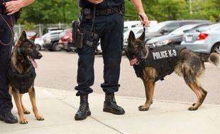 Police américaine - illustration