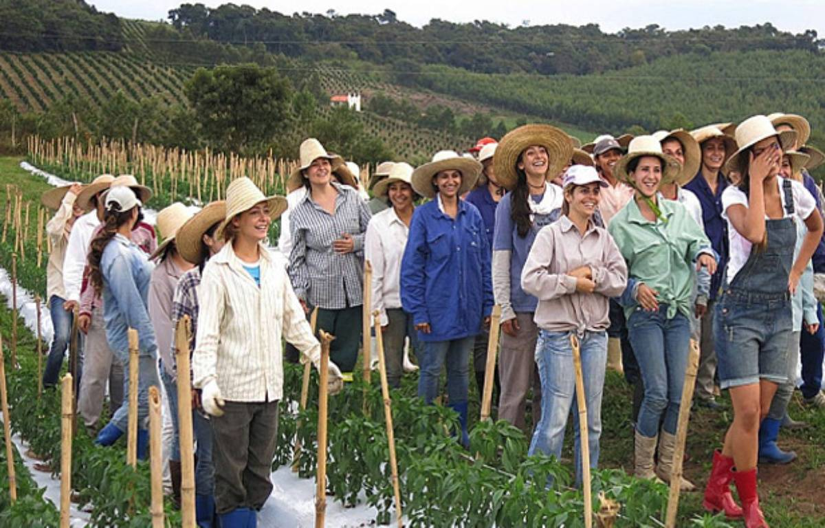 A Noiva do Cordeiro, ce sont les femmes qui commandent. Le coin a l'air sympa, non ?  – Capture d'écran / Facebook