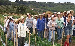 A Noiva do Cordeiro, ce sont les femmes qui commandent. Le coin a l'air sympa, non ?