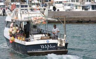 L'échec de la première pêche au requin organisée par l'Etat à la Réunion semble conforter les scientifiques opposés au prélèvement, pour qui l'île n'abrite pas d'individus sédentaires installés près de ses plages ou dans sa Réserve, malgré leurs attaques répétées.