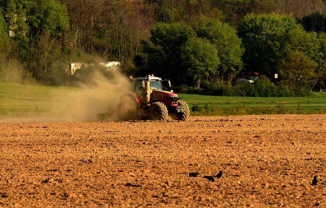 648x415 agriculteur plein travail