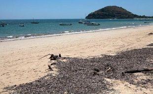 Les traces des émeutes de jeudi étaient toujours visibles vendredi sur l'île touristique de Nosy Be, à Madagascar, après le lynchage de trois hommes, dont un Français et un Franco-Italien, accusés par la foule de l'assassinat d'un enfant.