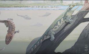Deux fossiles de tétrapodes ont été découverts en Afrique du Sud.