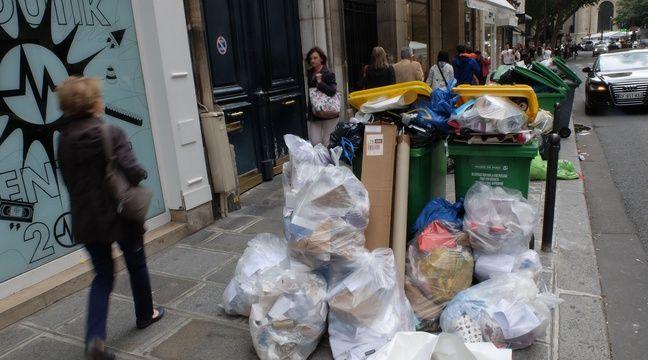 Paris: Une première rue «zéro déchet» avant une extension à toute la capitale?