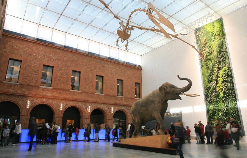 Museu de Toulouse