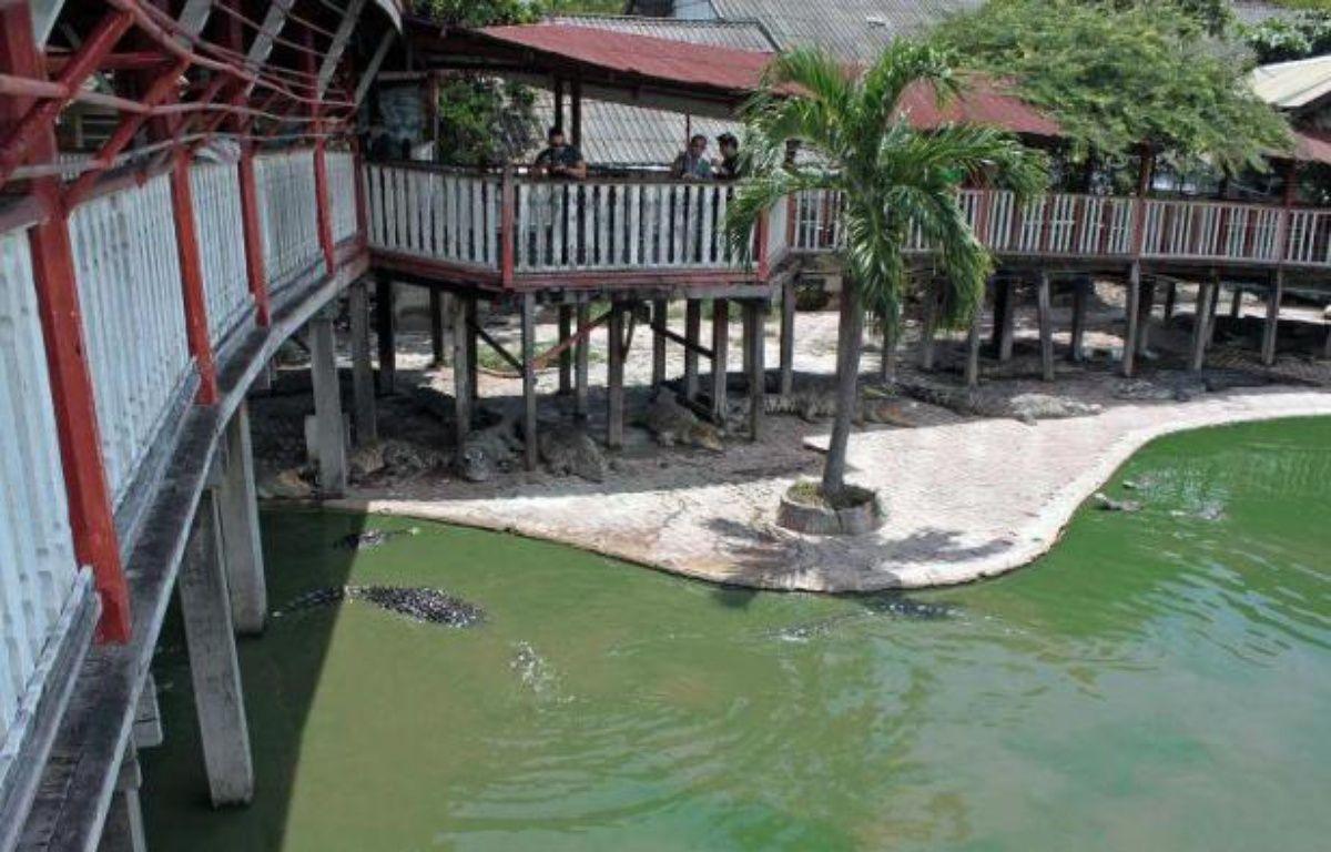 La ferme-zoo près de Bangkok, où une femme de 65 ans s'est suicidée le 15 septembre 2014 en se jetant dans un bassin rempli de crocodiles – AFP AFP