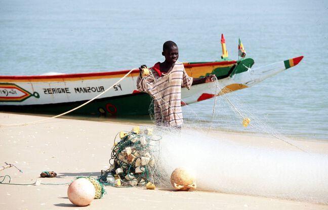 Sénégal : La maladie de peau qui touche les pêcheurs reste un mystère
