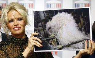 Pamela Anderson était à l'Assemblée nationale mardi.
