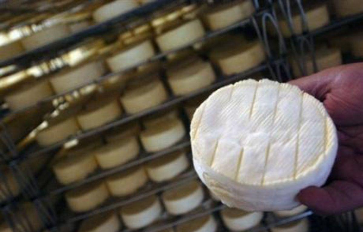 Le camembert AOC de Normandie devrait rester fabriqué au lait cru, les petits producteurs ayant remporté une victoire décisive face aux industriels qui voulaient supprimer cette obligation, selon des sources proches du dossier. –  AFP/Archives