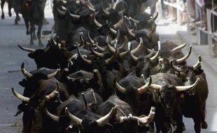 Une peine de quatre mois de prison avec sursis a été requise vendredi à Nîmes à l'encontre de deux élus du Grau-du-Roi (Gard), poursuivis pour homicide involontaire après la mort, en 2006, d'un homme de 77 ans percuté par un taureau lors d'un lâcher.