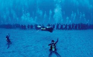 110 plongeurs ont formé une chaine humaine de 76 mètres de long à La Réunion, le 1er décembre 2013.