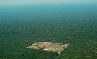 Photo prise le 22 septembre 2017 d'une zone de l'Amazonie victime de la déforestation