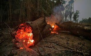 Vendredi, le président Jair Bolsonaro a autorisé le déploiement de l'armée brésilienne pour aider à combattre les incendies dans la forêt amazonienne. Ici dans la région d'Abuna, dans l'État de Rondônia.