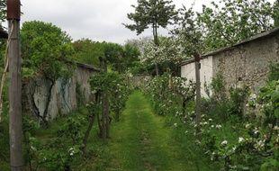 La parcelle des murs à pêches abrite l'un des plus beaux jardins du site.